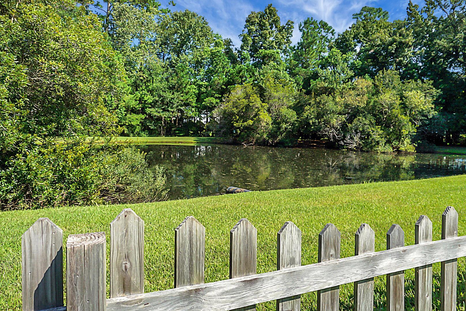 Ivy Hall Homes For Sale - 3075 Morningdale, Mount Pleasant, SC - 4