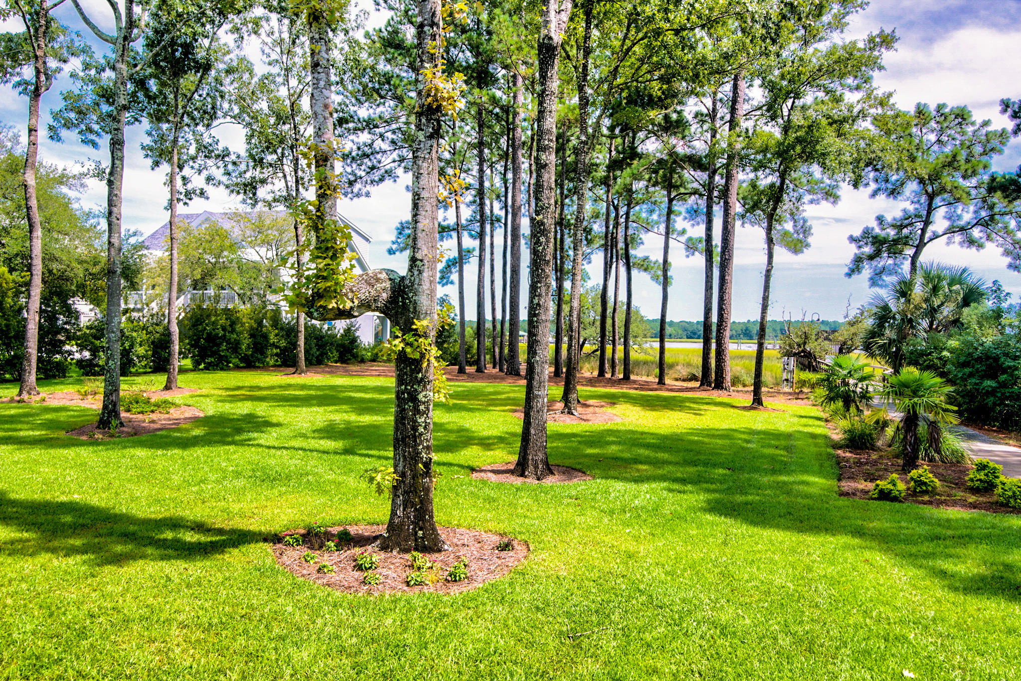 1280 River Walk Court Charleston, SC 29492