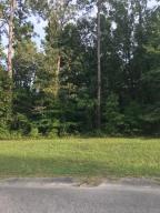 Lot 2 Ash Hill Drive, Eutawville, SC 29048