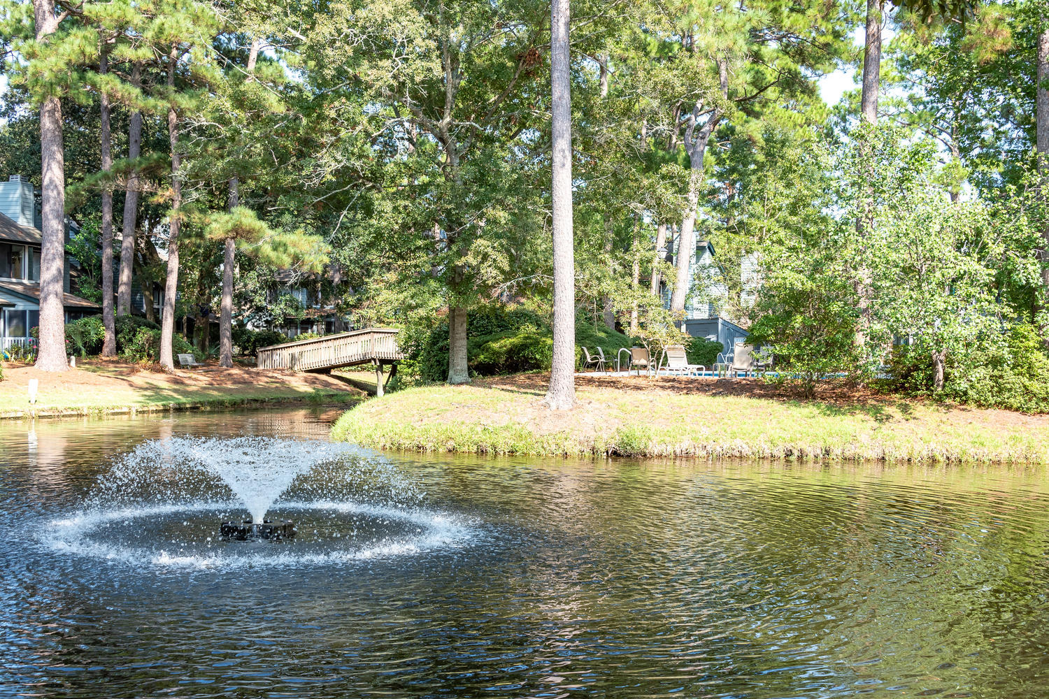 Snee Farm Lakes Homes For Sale - 1118 Hidden Cove, Mount Pleasant, SC - 4