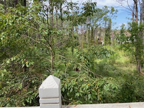 Seaside Farms Homes For Sale - 1560 Sea Palms, Mount Pleasant, SC - 8
