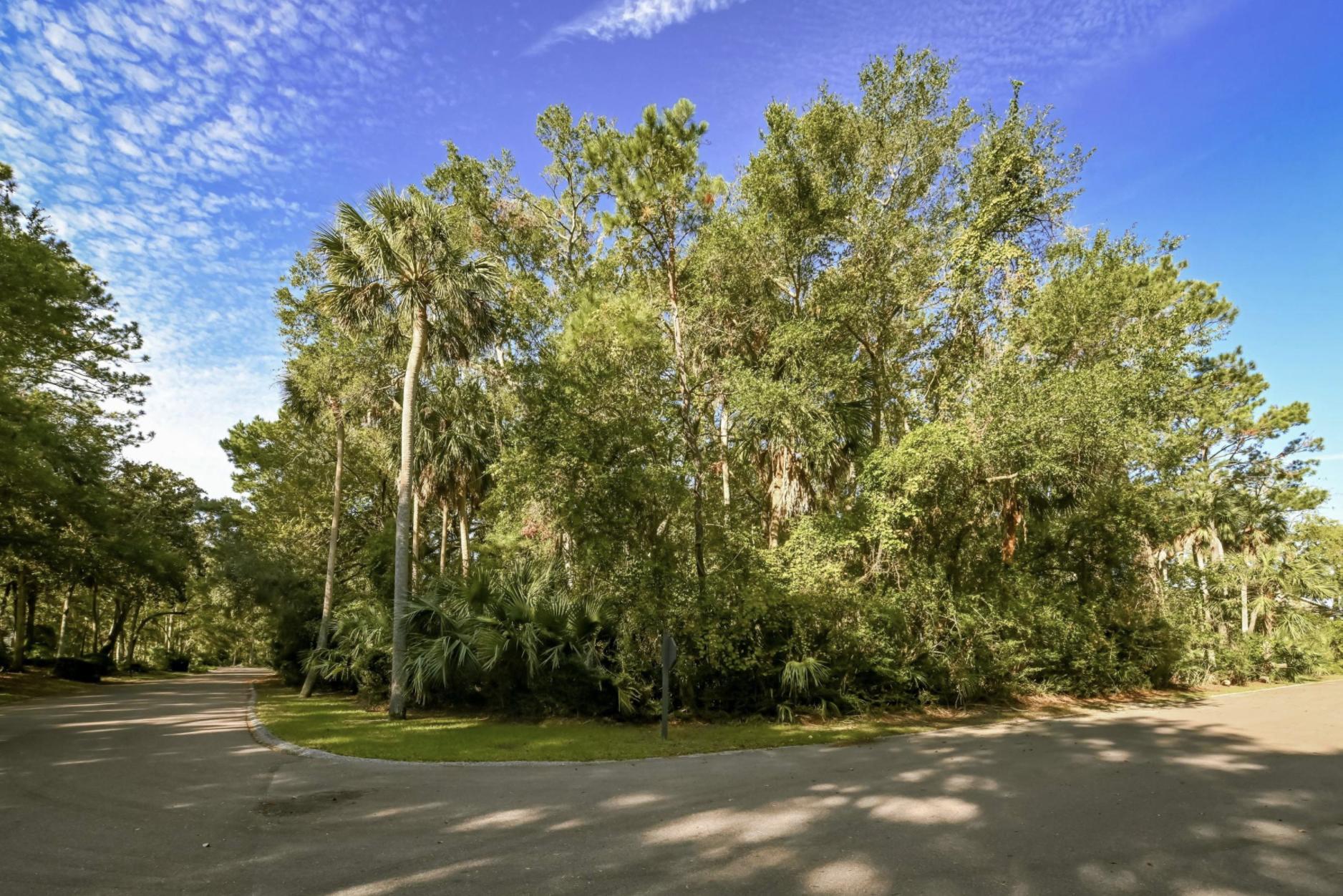 3137 Privateer Creek Road Seabrook Island, SC 29455