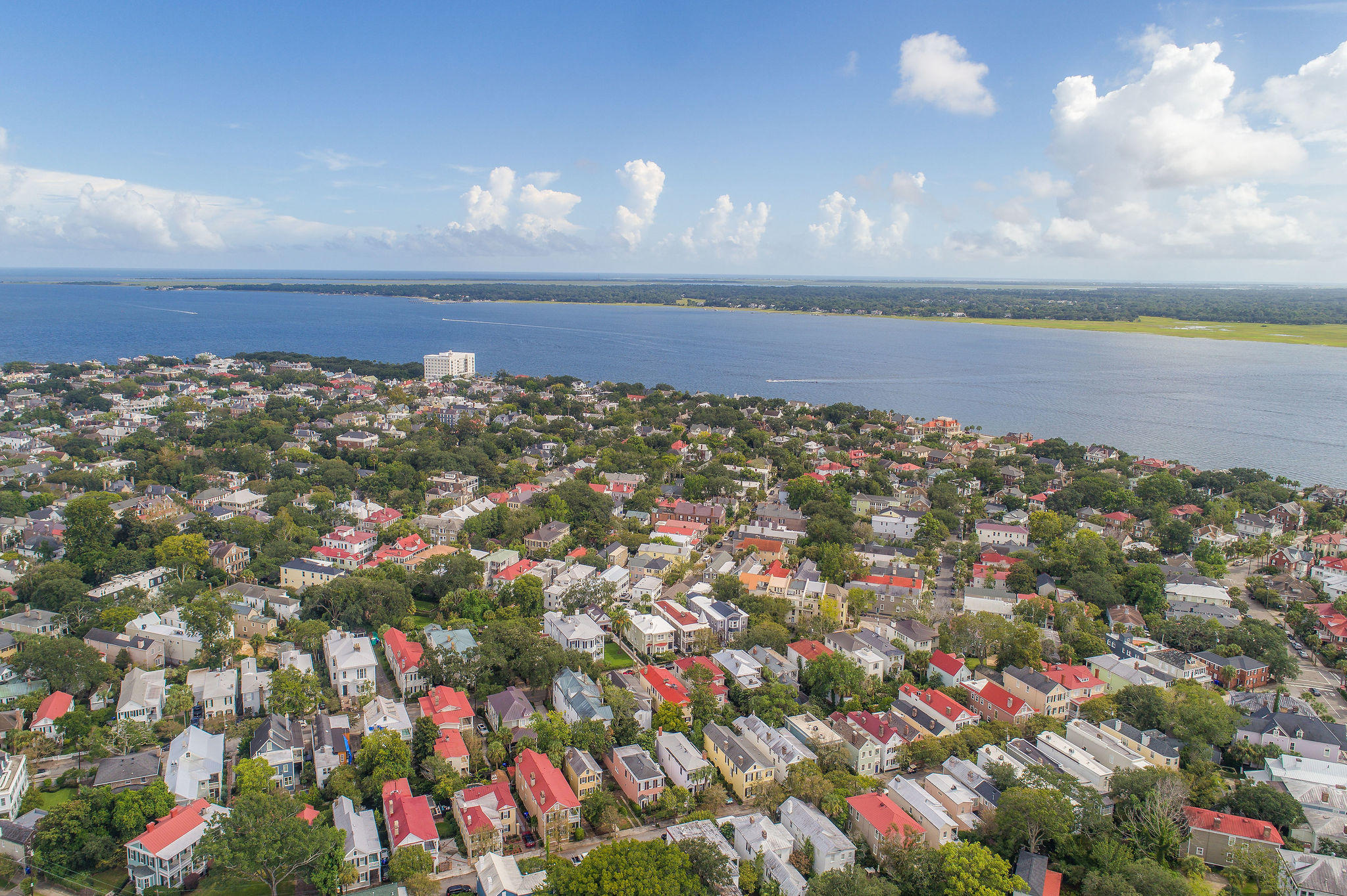 South of Broad Homes For Sale - 40 Savage, Charleston, SC - 18