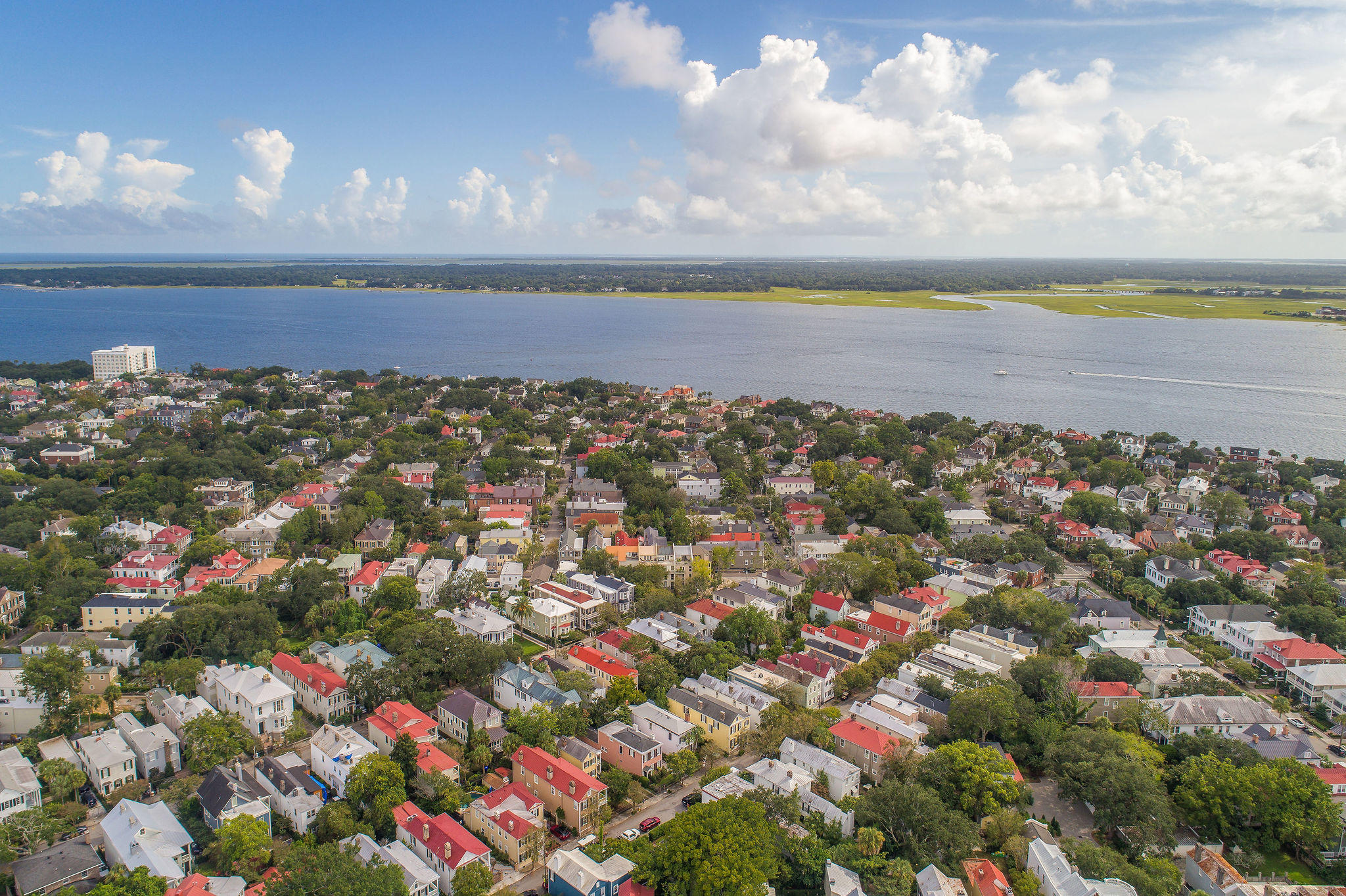 South of Broad Homes For Sale - 40 Savage, Charleston, SC - 19
