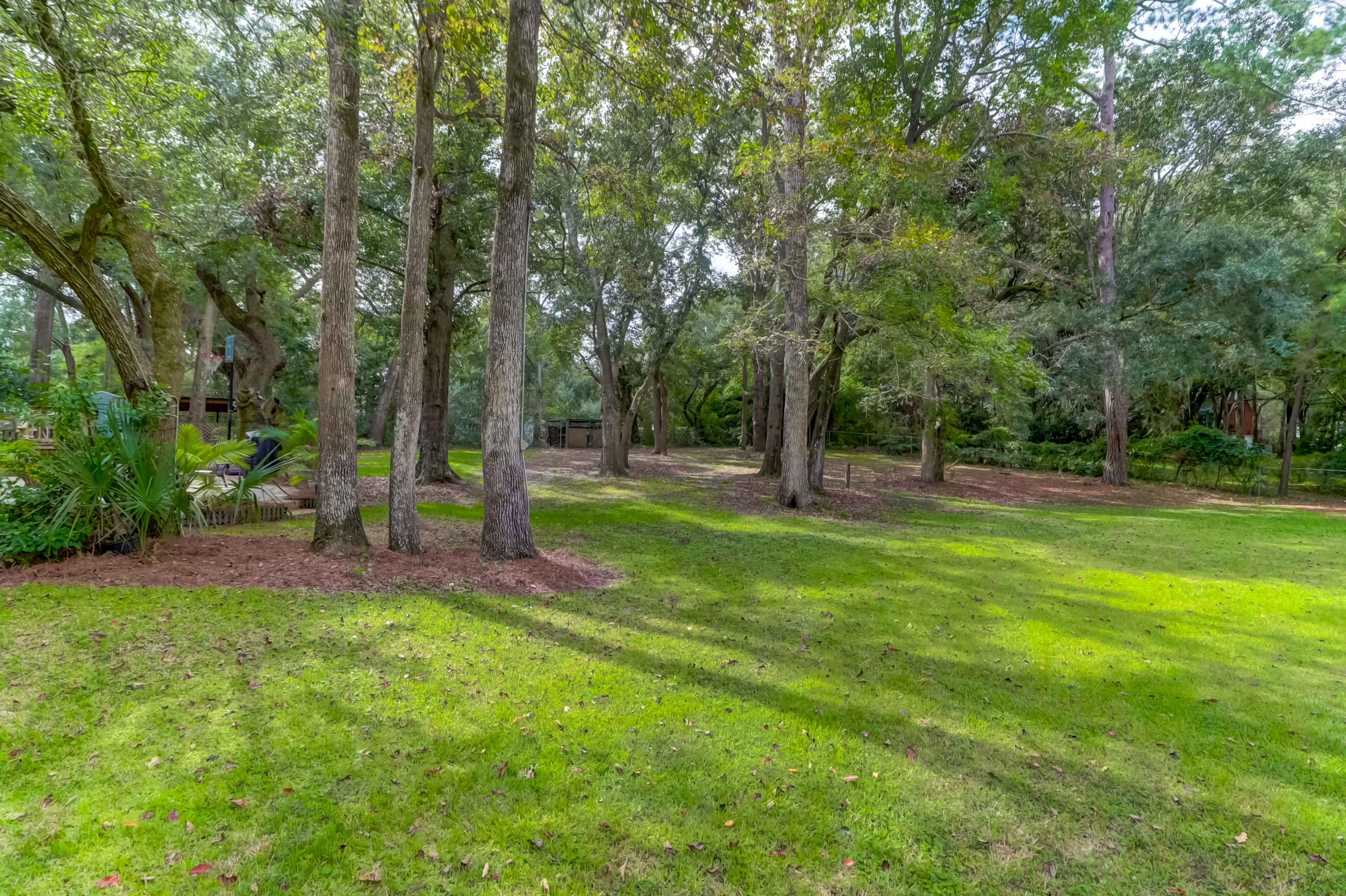 Ryefield Homes For Sale - 779 Dupre, Mount Pleasant, SC - 24