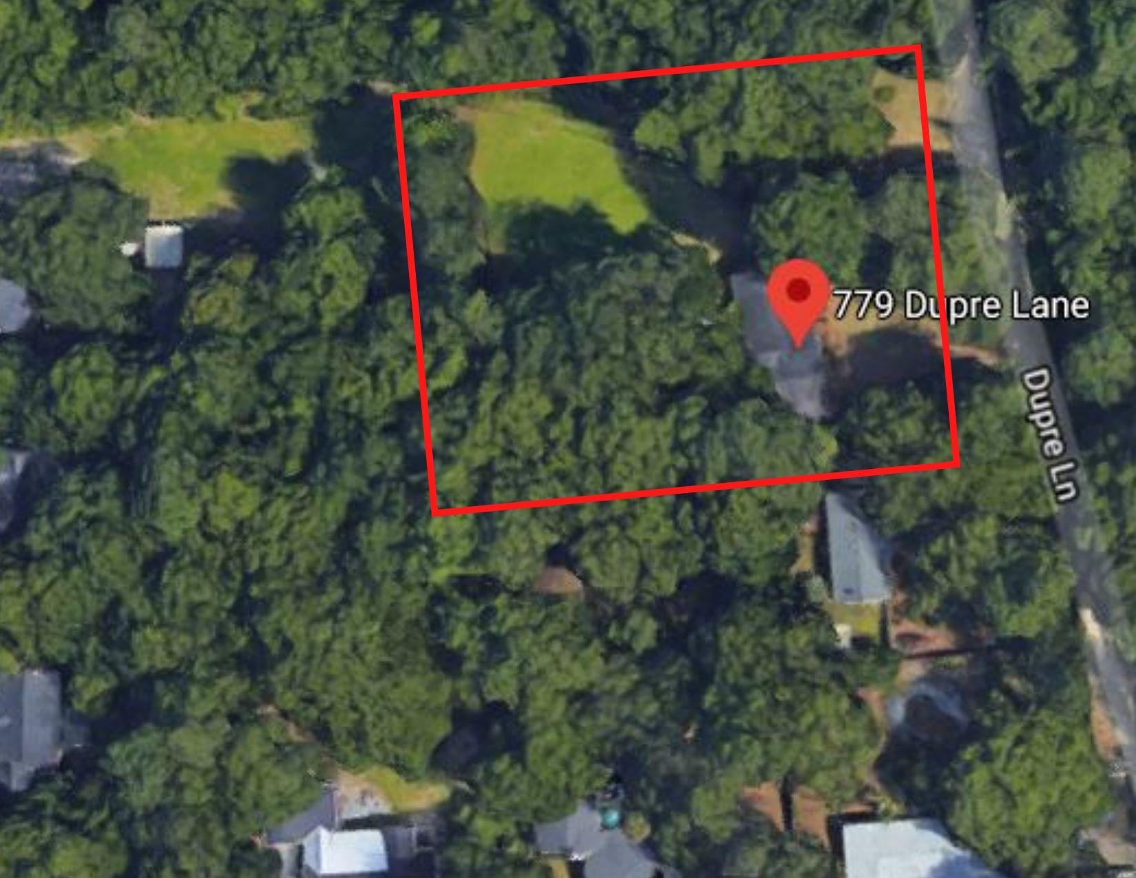 Ryefield Homes For Sale - 779 Dupre, Mount Pleasant, SC - 21