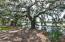 5827 Grimshaw Road, Johns Island, SC 29455