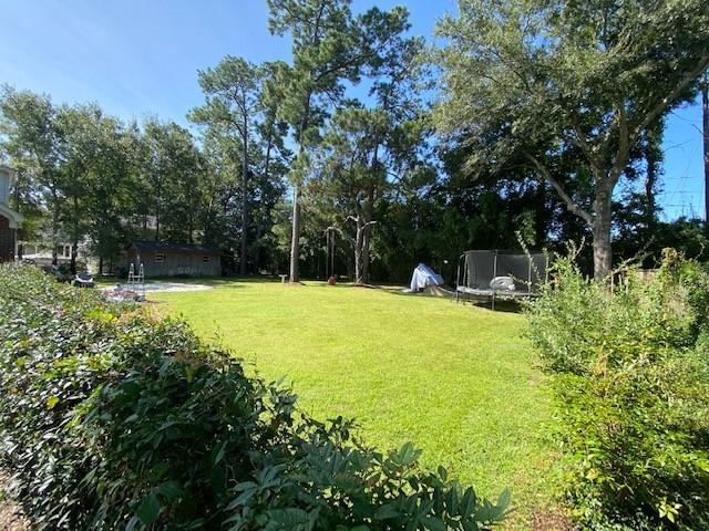 The Groves Homes For Sale - 970 Lansing, Mount Pleasant, SC - 10