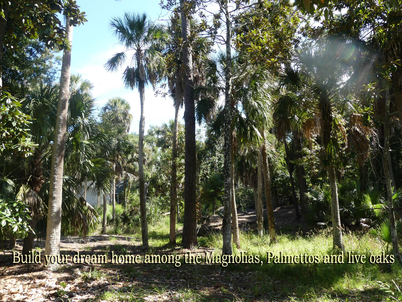 17 Gun Bluff Road Edisto Island, SC 29438