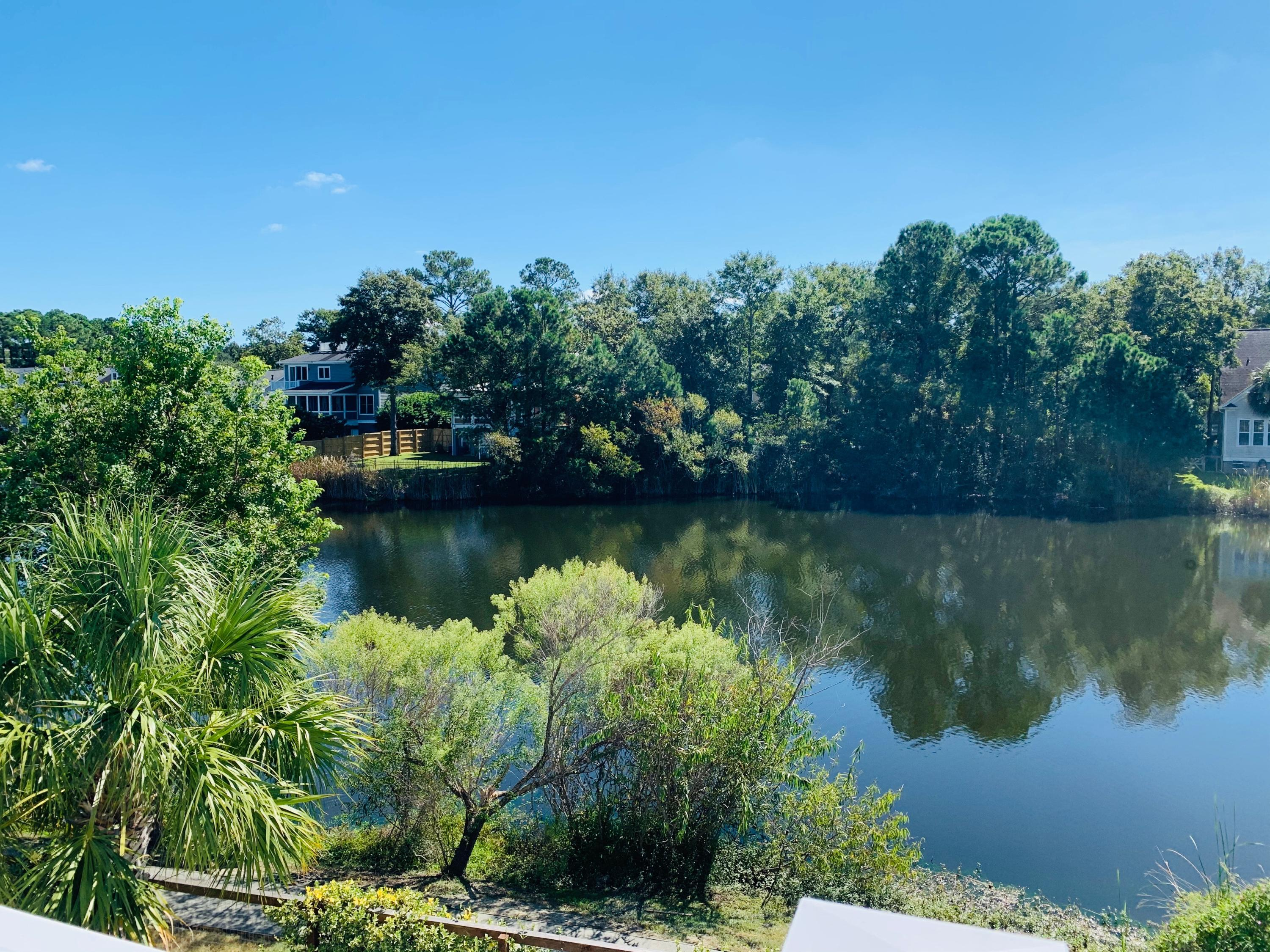 Watermark Homes For Sale - 1675 Paradise Lake, Mount Pleasant, SC - 6