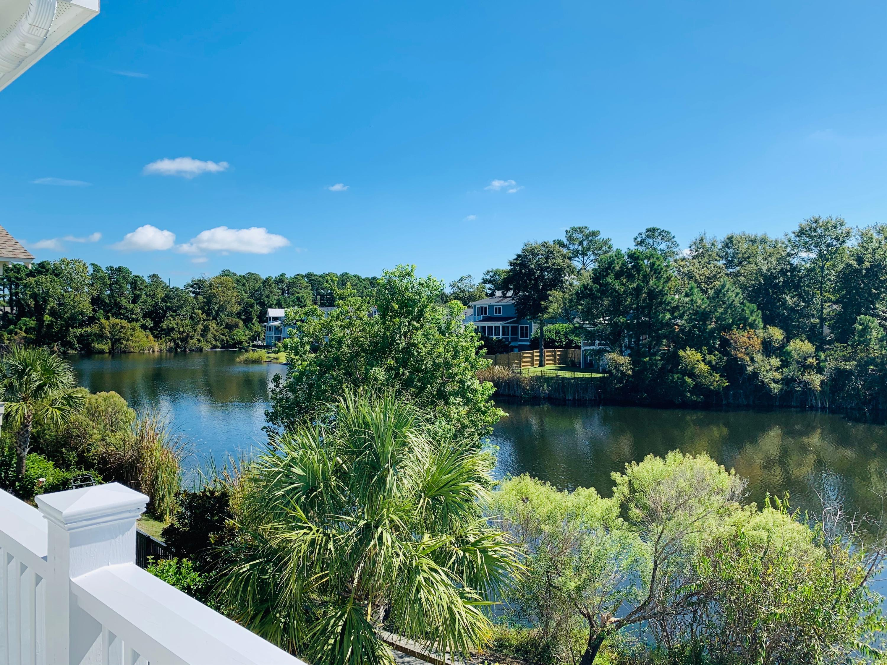 Watermark Homes For Sale - 1675 Paradise Lake, Mount Pleasant, SC - 70