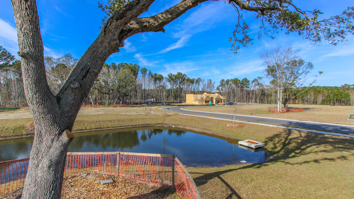Bees Crossing Homes For Sale - 3794 Sawmill, Mount Pleasant, SC - 23