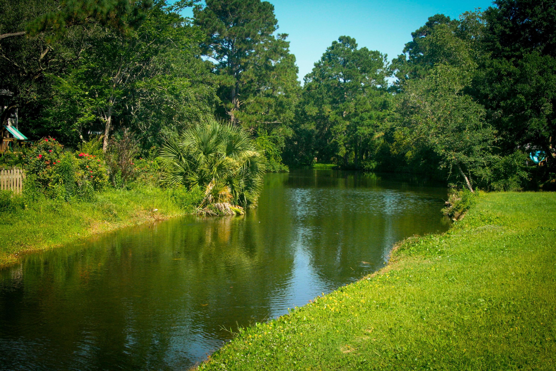 Oakhaven Plantation Homes For Sale - 1480 Pine Island View, Mount Pleasant, SC - 57