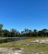 Woodbury Park Homes For Sale - 2720 Harmony Lake, Johns Island, SC - 31