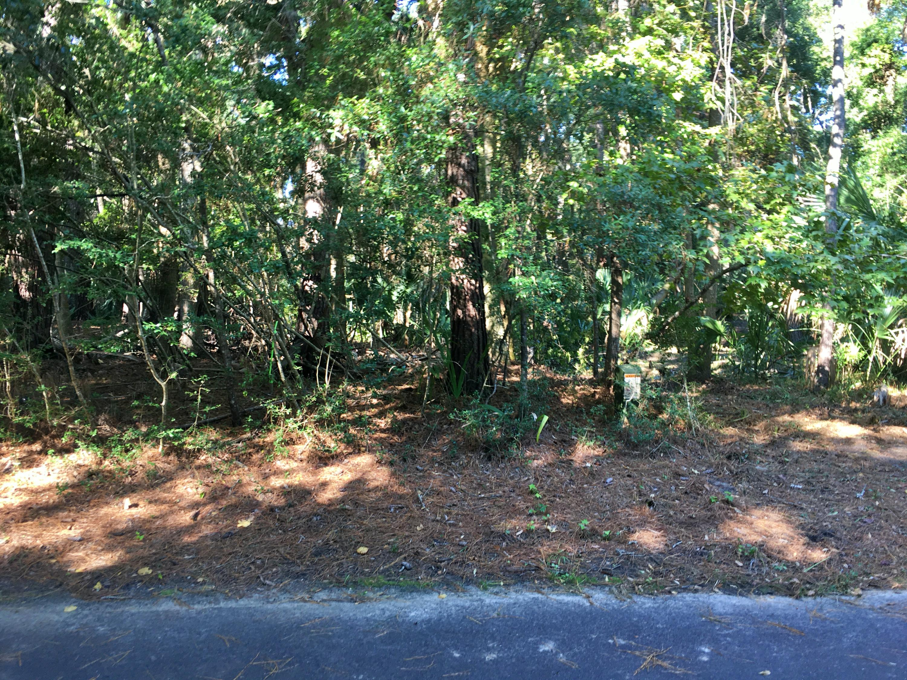 Seabrook Island Lots For Sale - 2763 Old Oak, Seabrook Island, SC - 21