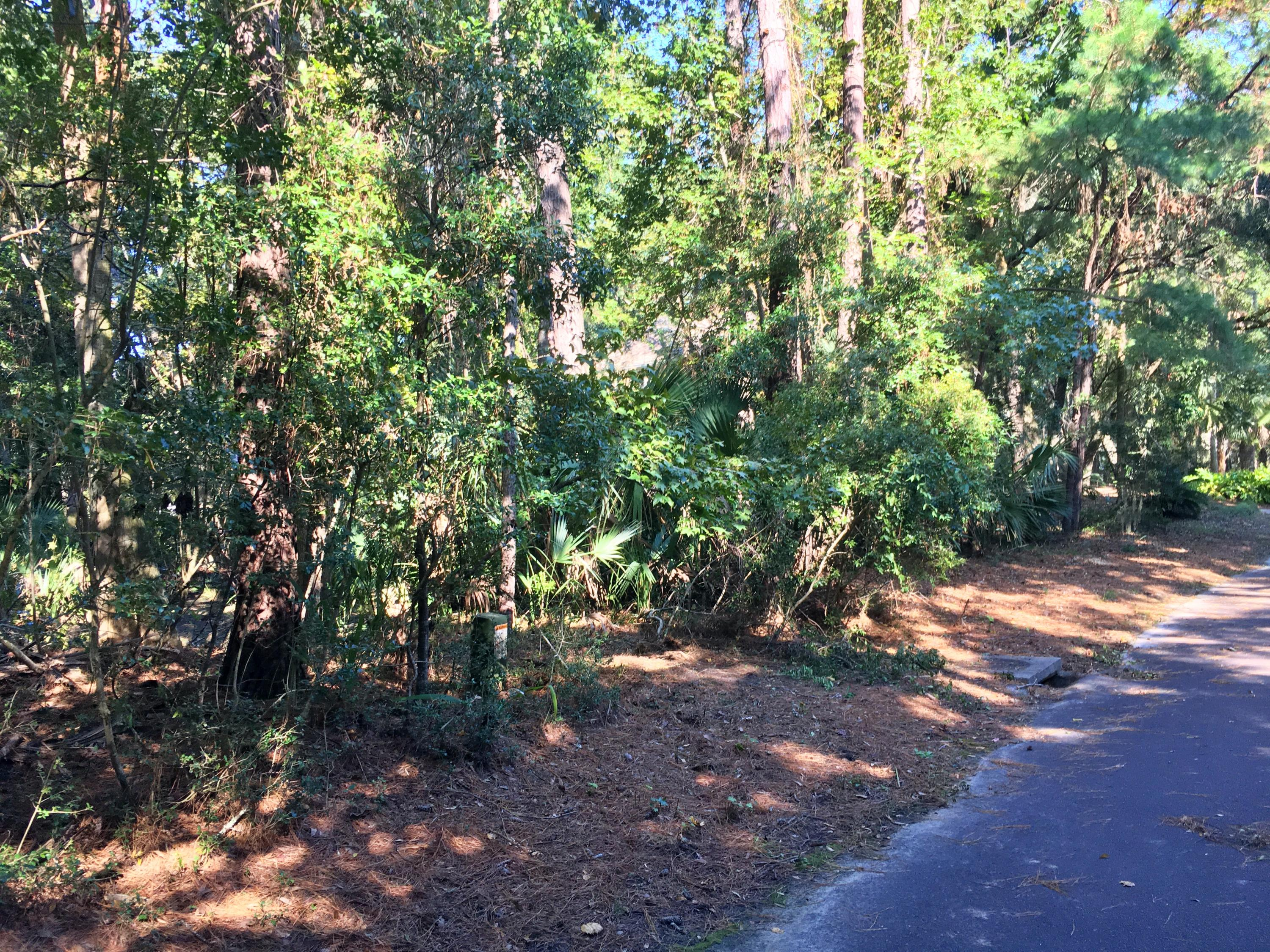 Seabrook Island Lots For Sale - 2763 Old Oak, Seabrook Island, SC - 22