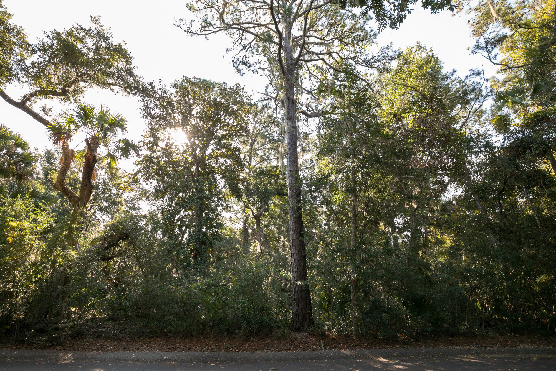 Seabrook Island Lots For Sale - 2665 Gnarled Pine, Seabrook Island, SC - 50