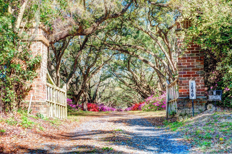 Avenue of Oaks Homes For Sale - 1087 Avenue Of Oaks, Charleston, SC - 5