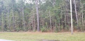 0 Old Back River Road, Goose Creek, SC 29445