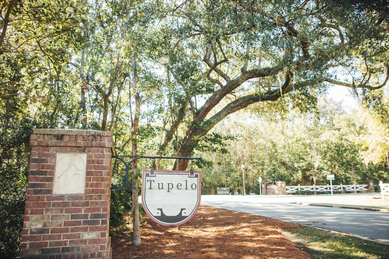 Tupelo Homes For Sale - 1331 Paint Horse, Mount Pleasant, SC - 6
