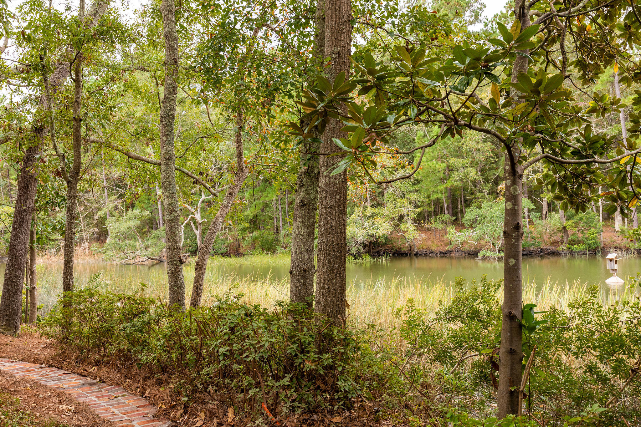 Somerset Point Homes For Sale - 660 Cain, Mount Pleasant, SC - 46