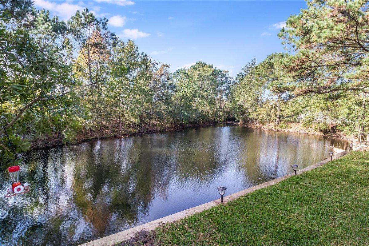 Waters Edge Homes For Sale - 1232 Bridgeport, Mount Pleasant, SC - 8