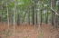 Lot 30 Wild Turkey Way, Johns Island, SC 29455