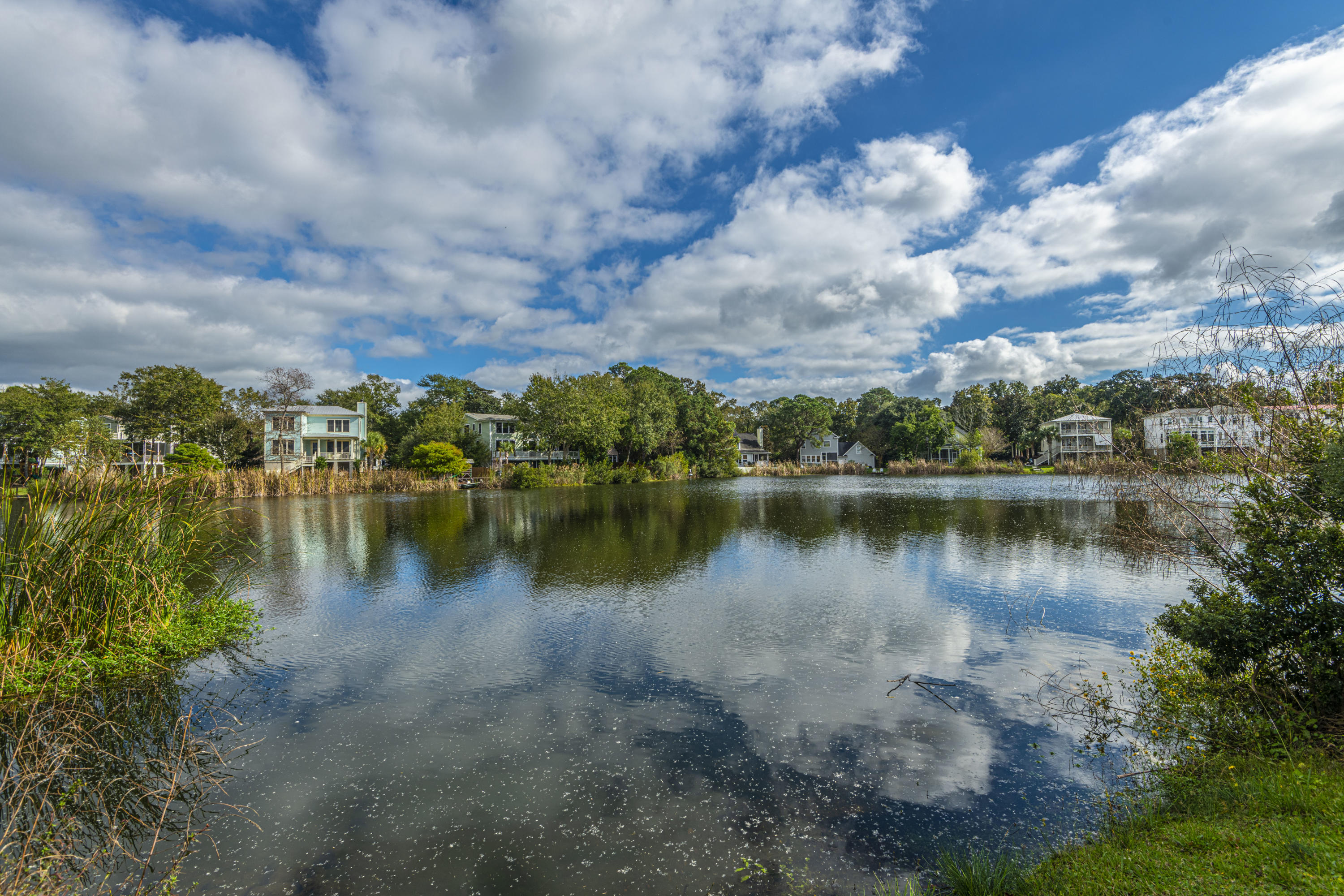 Watermark Homes For Sale - 1401 Lettered Olive, Mount Pleasant, SC - 25