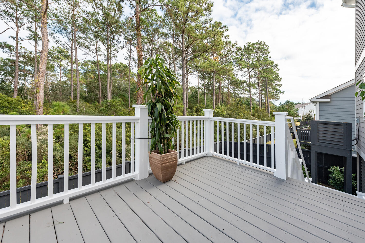 Oyster Point Homes For Sale - 1606 Fort Palmetto Circle, Mount Pleasant, SC - 6