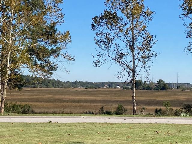 Lot 36 Jacobs Point Court Ravenel, SC 29470