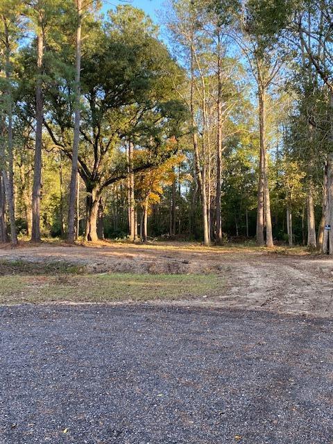 0000 Saddle Trail Summerville, SC 29483