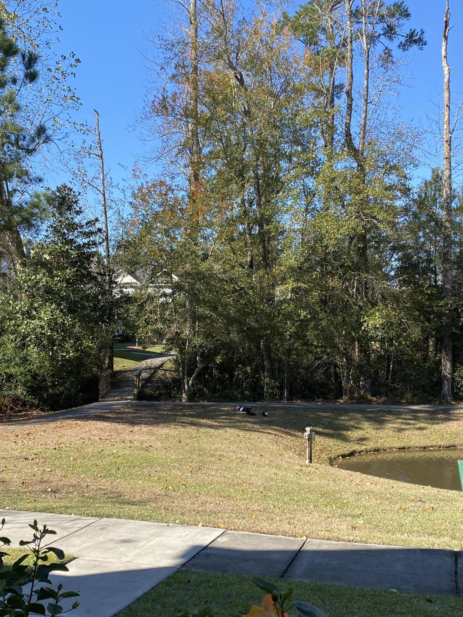 223 Bennett Lane Summerville, SC 29483