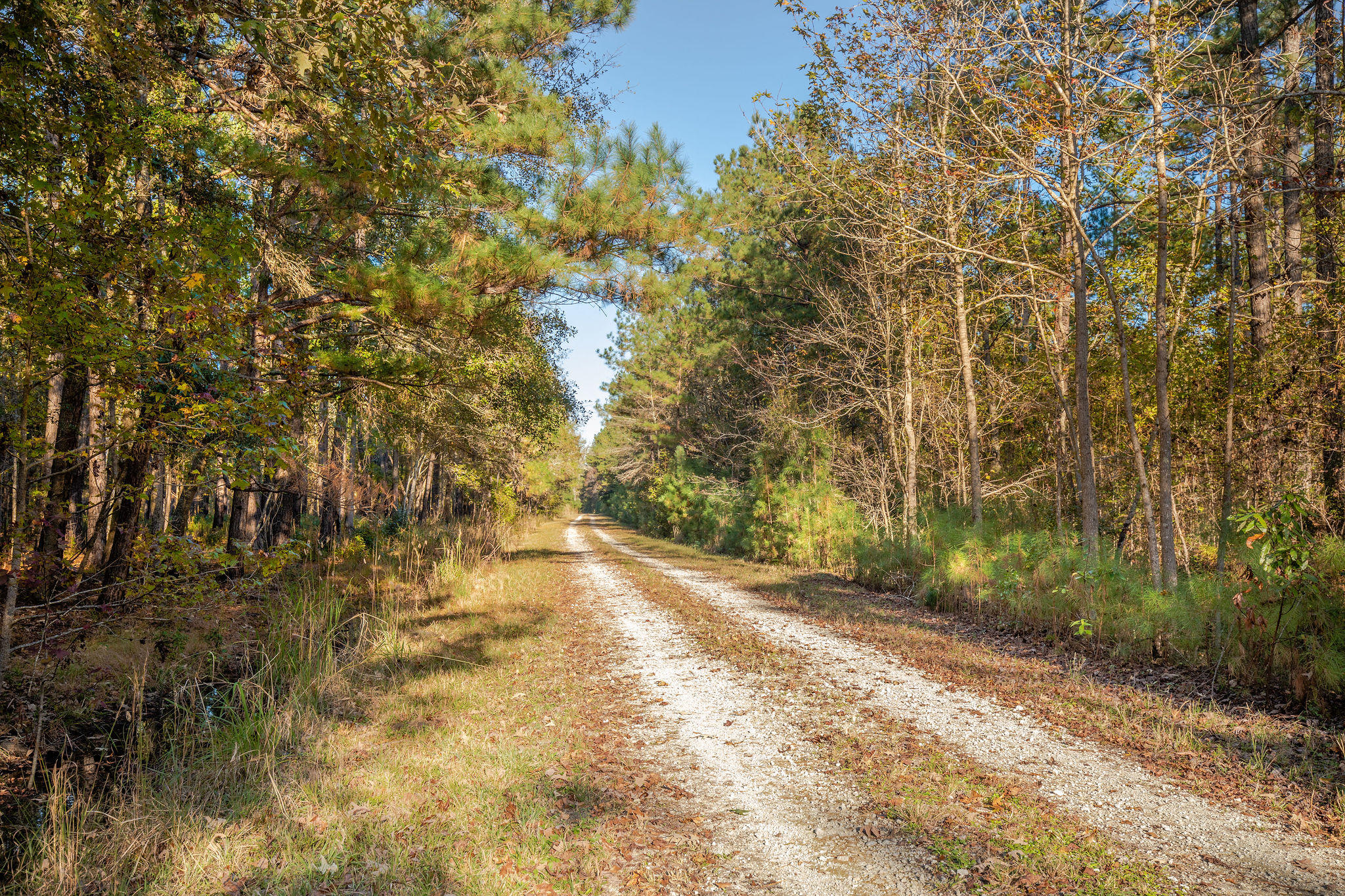 Haven Road Ridgeville, SC 29472