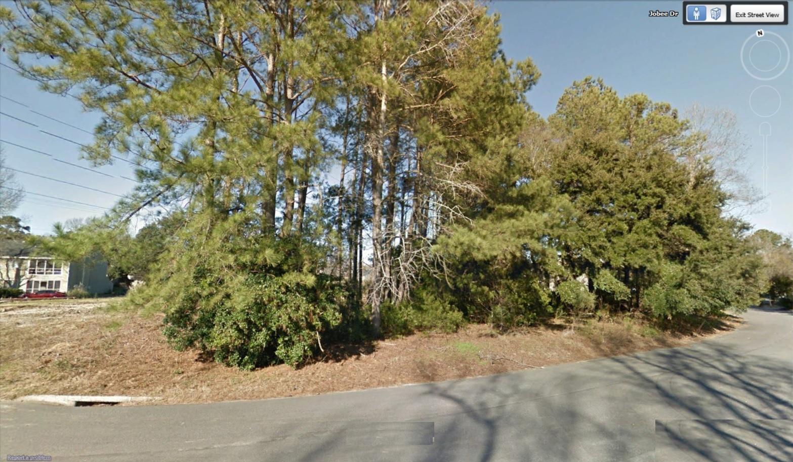 Jobee Drive Charleston, SC 29414