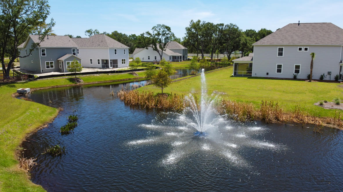 Bees Crossing Homes For Sale - 991 Sago Palm, Mount Pleasant, SC - 4