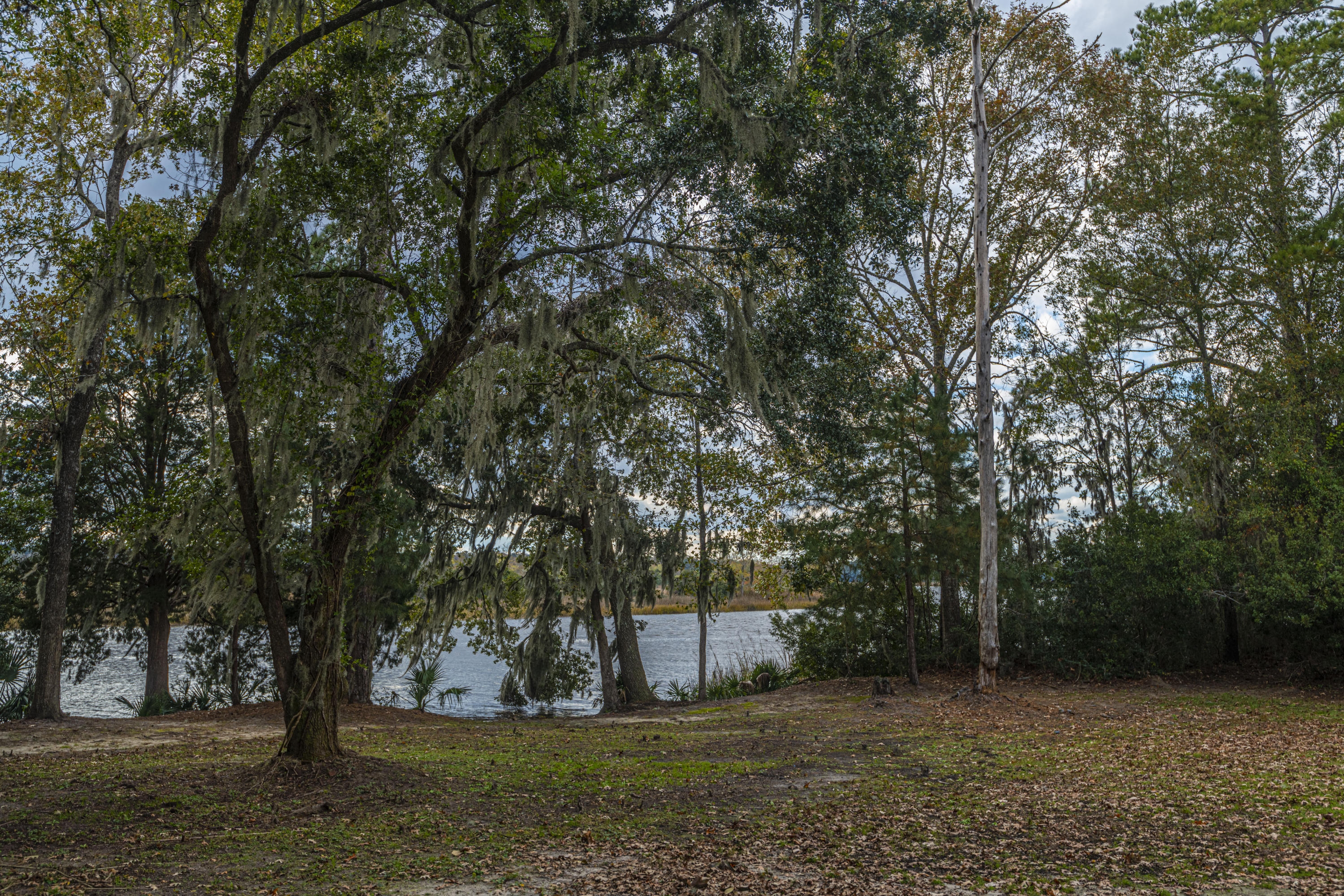 Summers Bend on the Ashley Homes For Sale - 8321 Childs Cove, North Charleston, SC - 27