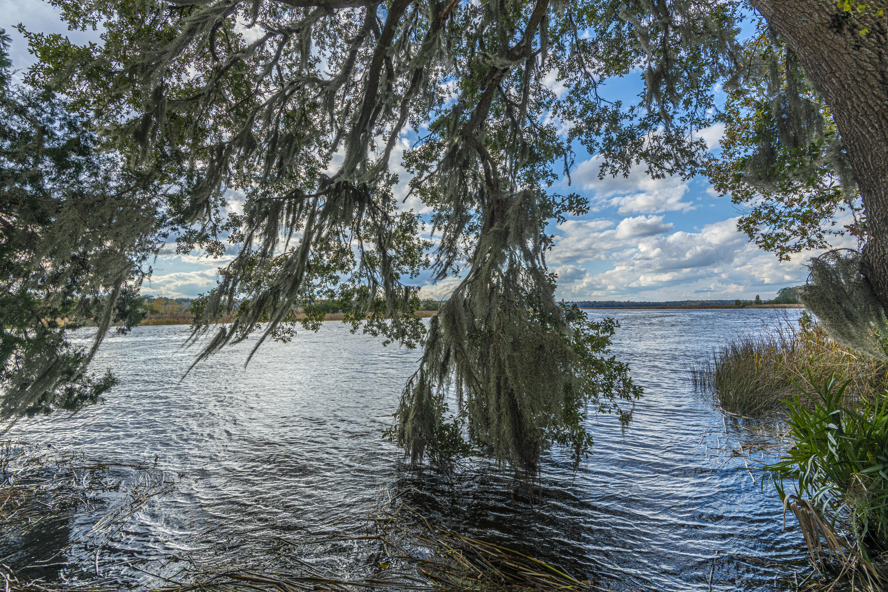 Summers Bend on the Ashley Homes For Sale - 8321 Childs Cove, North Charleston, SC - 29