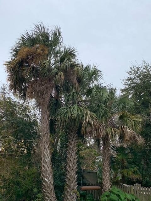 Westside Homes For Sale - 11 Larnes, Charleston, SC - 0