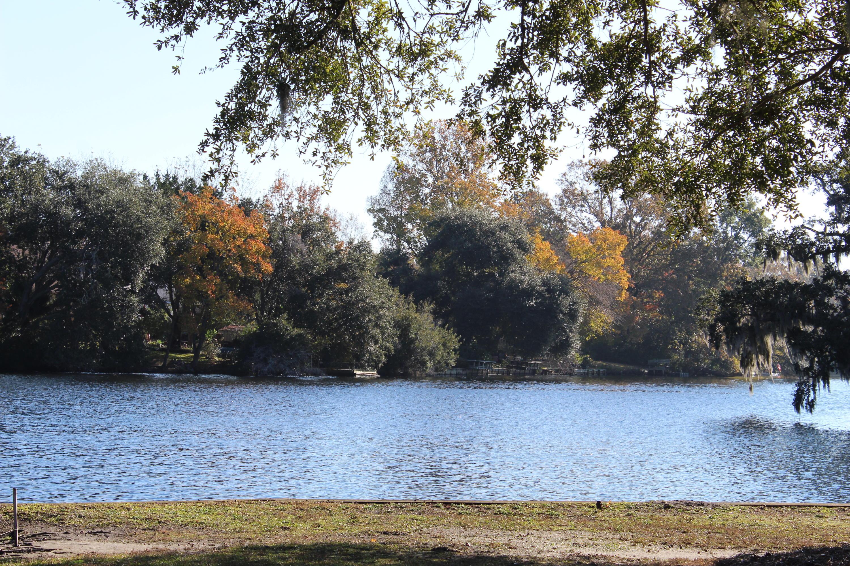 Lawton Bluff Homes For Sale - 735 Lawton Pl, Charleston, SC - 71