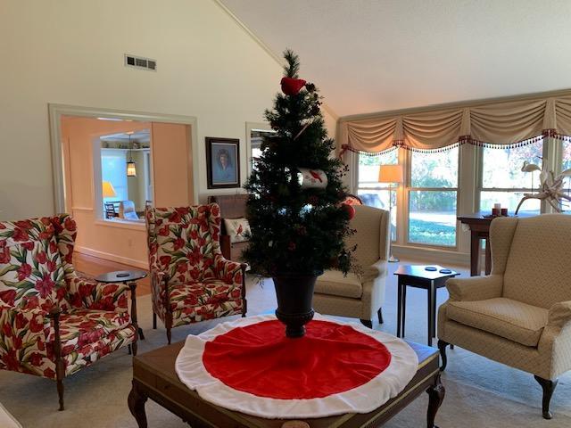 Lawton Bluff Homes For Sale - 735 Lawton Pl, Charleston, SC - 95