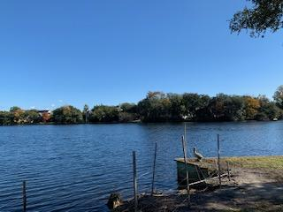 Lawton Bluff Homes For Sale - 735 Lawton Pl, Charleston, SC - 65