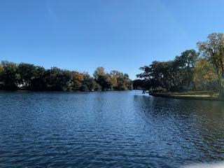 Lawton Bluff Homes For Sale - 735 Lawton Pl, Charleston, SC - 53