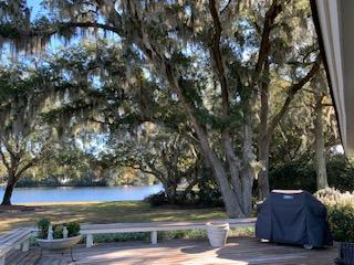 Lawton Bluff Homes For Sale - 735 Lawton Pl, Charleston, SC - 99