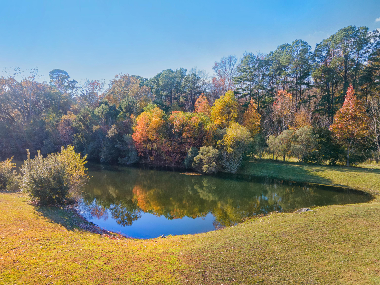 Carolina Park Homes For Sale - 1525 Lindsey Creek, Mount Pleasant, SC - 20
