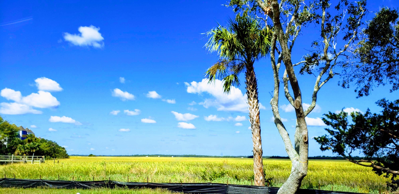 1008 Mariners Cay Drive Folly Beach, SC 29439