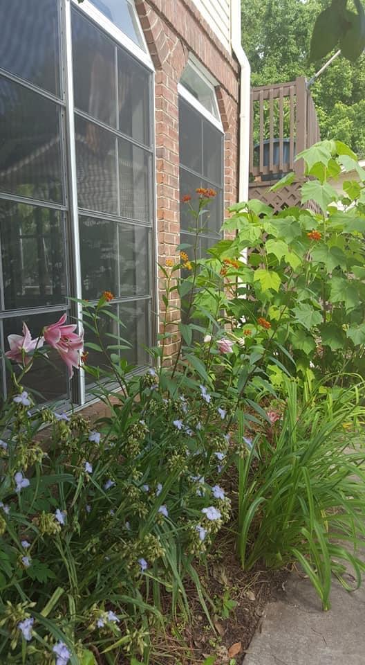 Shadowmoss Homes For Sale - 219 Burnham, Charleston, SC - 21