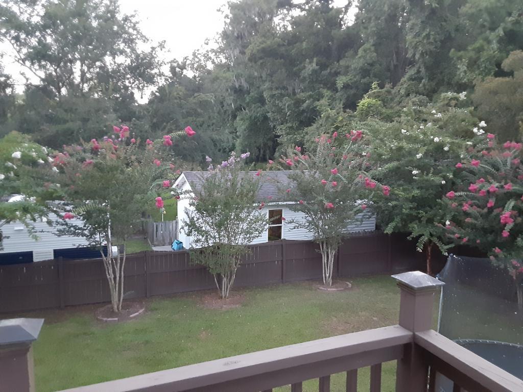 Shadowmoss Homes For Sale - 219 Burnham, Charleston, SC - 24