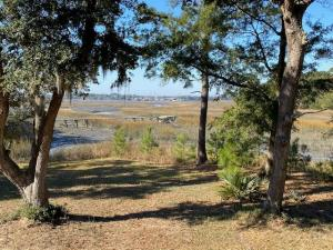 1358 Polly Point Road, Wadmalaw Island, SC 29487
