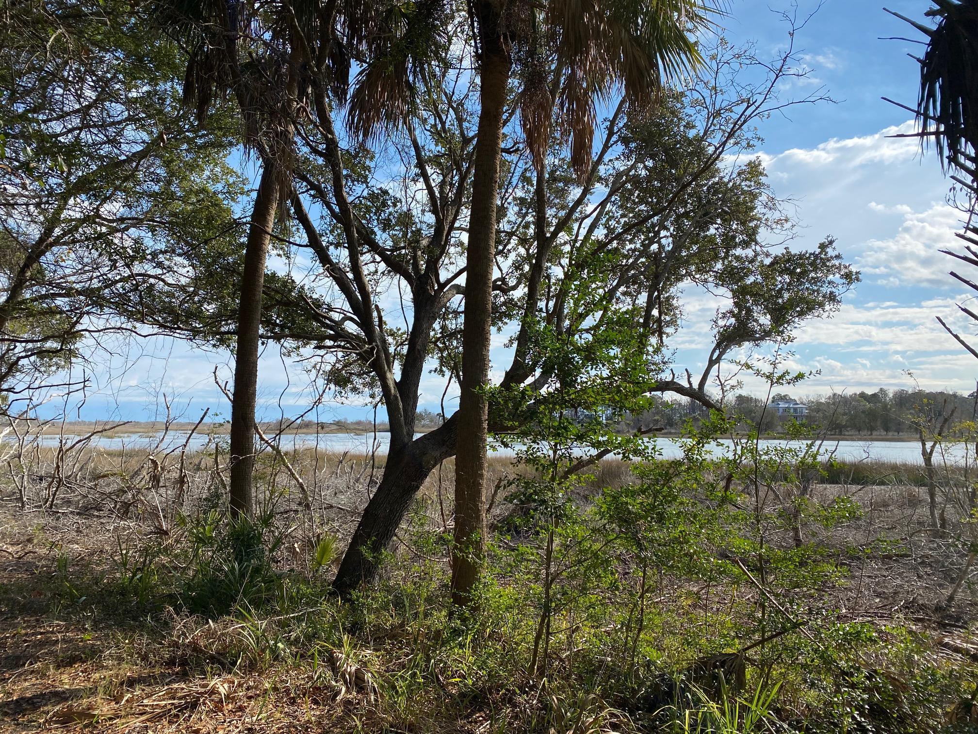 93 Lake Timicau Lane Dewees Island, SC 29451