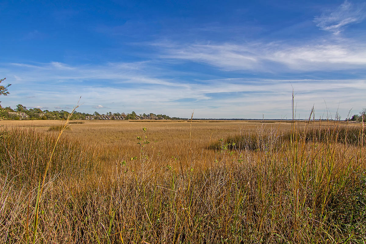 Battery Haig On The Stono Homes For Sale - 3103 Shore, Charleston, SC - 14